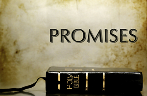 The Promise Of The Comforter
